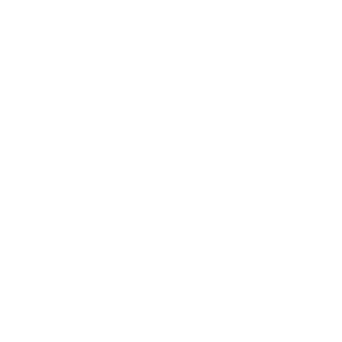 Входная дверь REX 1A Зеркало Беленый дуб